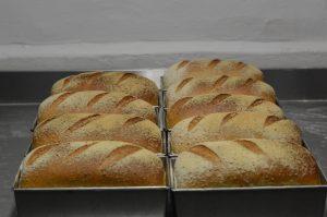 Grijs boerenbrood 800g